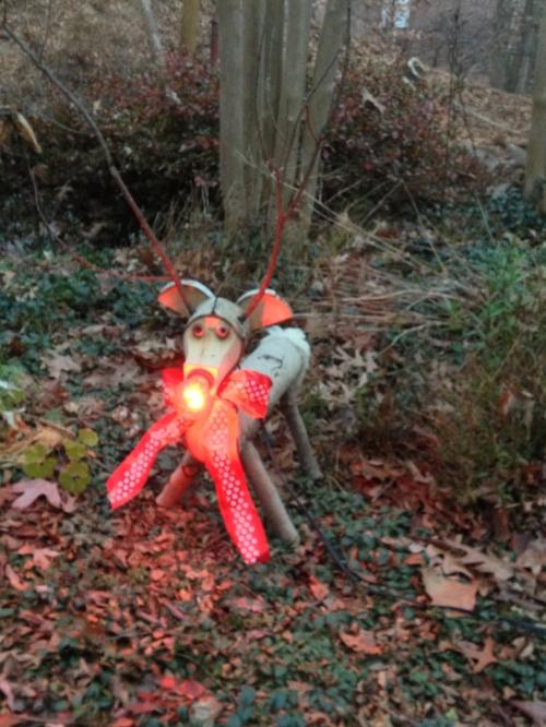 Outdoor Rudolph